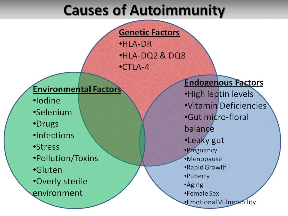 Graves' Disease - Episode 11 - causesofautoimmunity