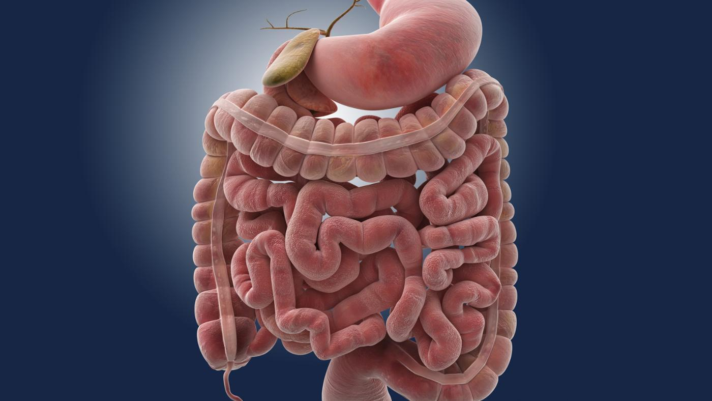 What Is The Best Test For Small Intestinal Bacterial Overgrowth