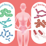 Gut Bacteria Imbalances Causing Weight Gain