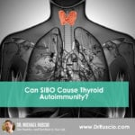 Can SIBO Cause Thyroid Autoimmunity?