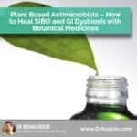 Plant Based Antimicrobials – How to Heal SIBO and GI Dysbiosis with Botanical Medicines