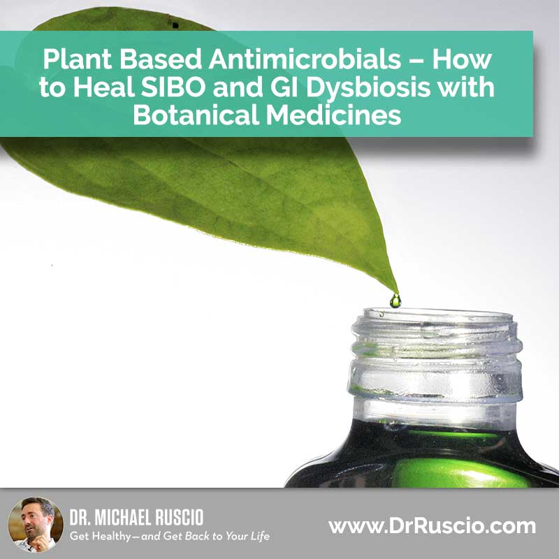 Plant Based Antimicrobials - How to Heal SIBO & GI Dysbiosis