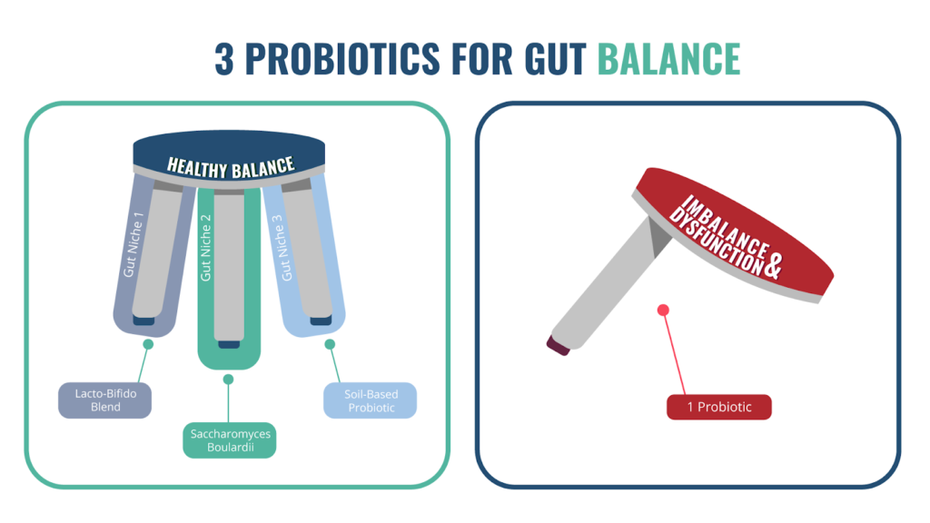 Probiotics Webinar - 3 PROBIOTICS FOR GUT BALANCE 16x9 1