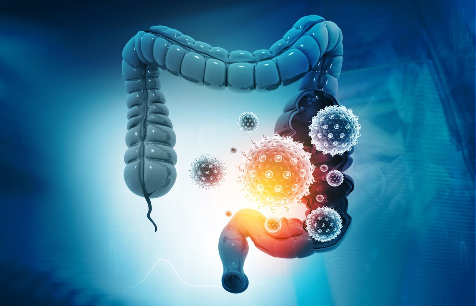 Soil-based probiotics: 3D illustration of intestines with bacteria and viruses