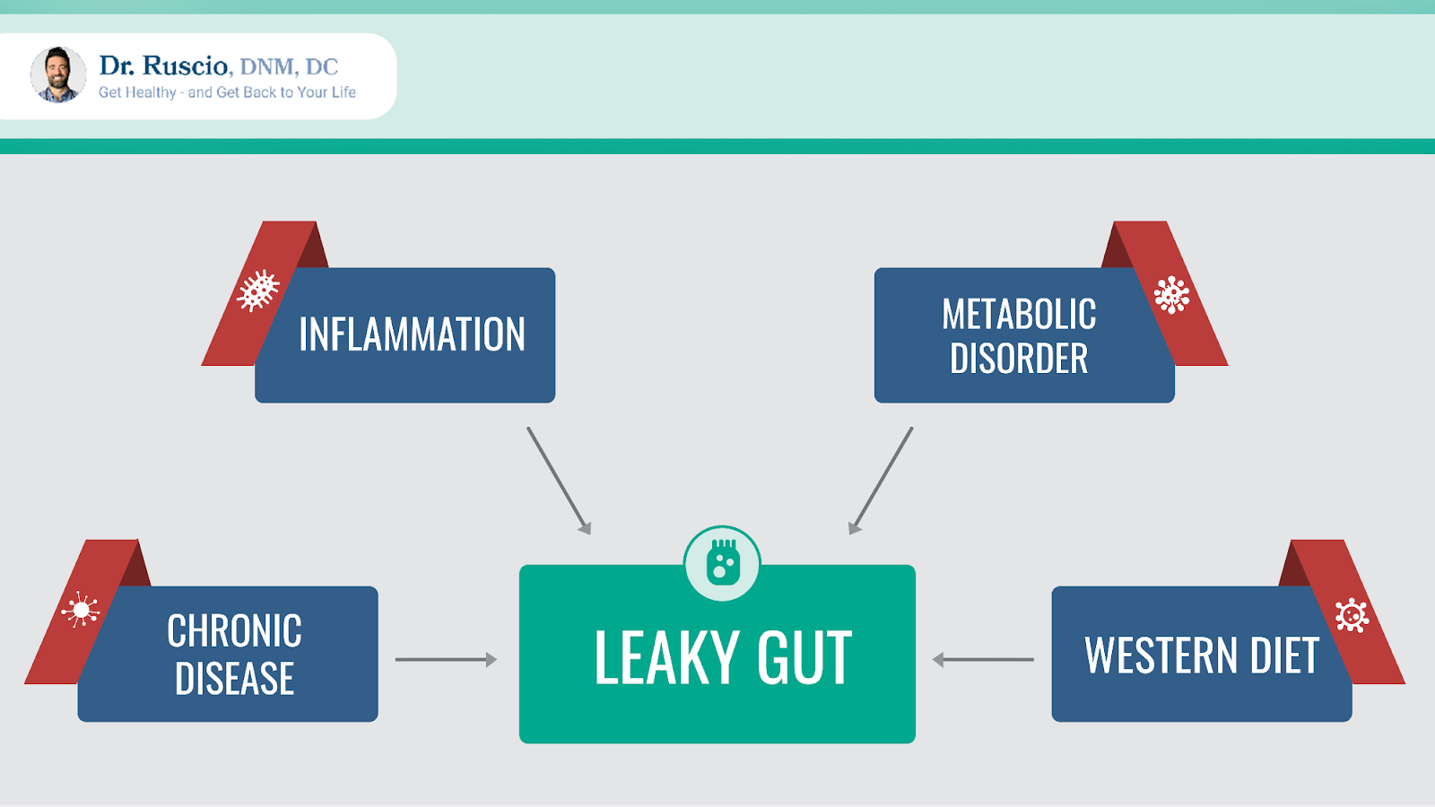 leaky gut supplements: boxes listing the causes of leaky gut