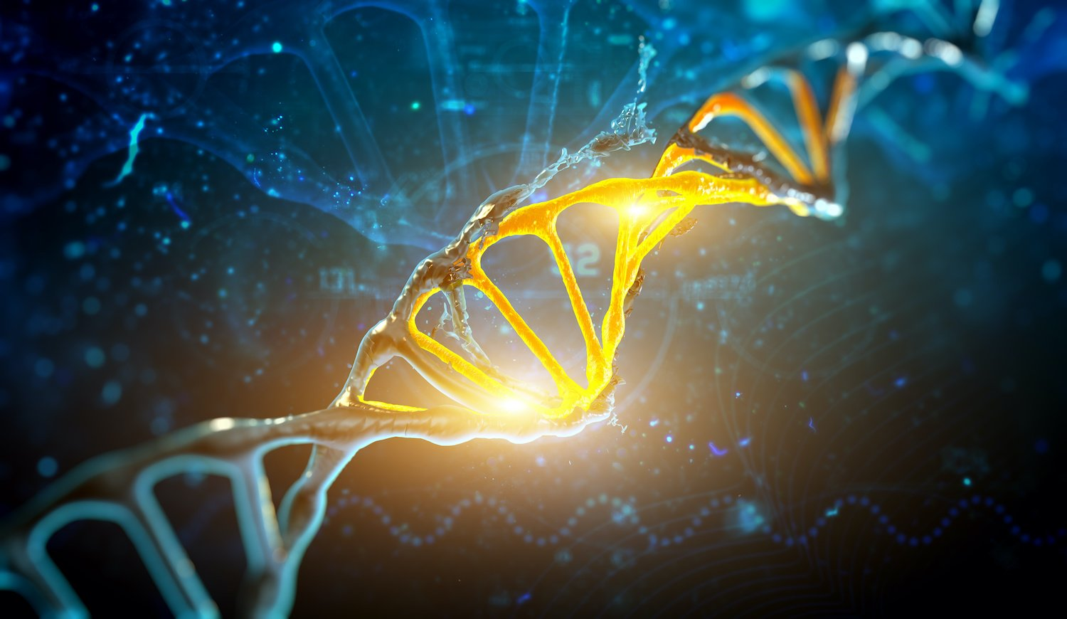 Is hypothyroidism genetic: 3D illustration of a DNA structure in blue background