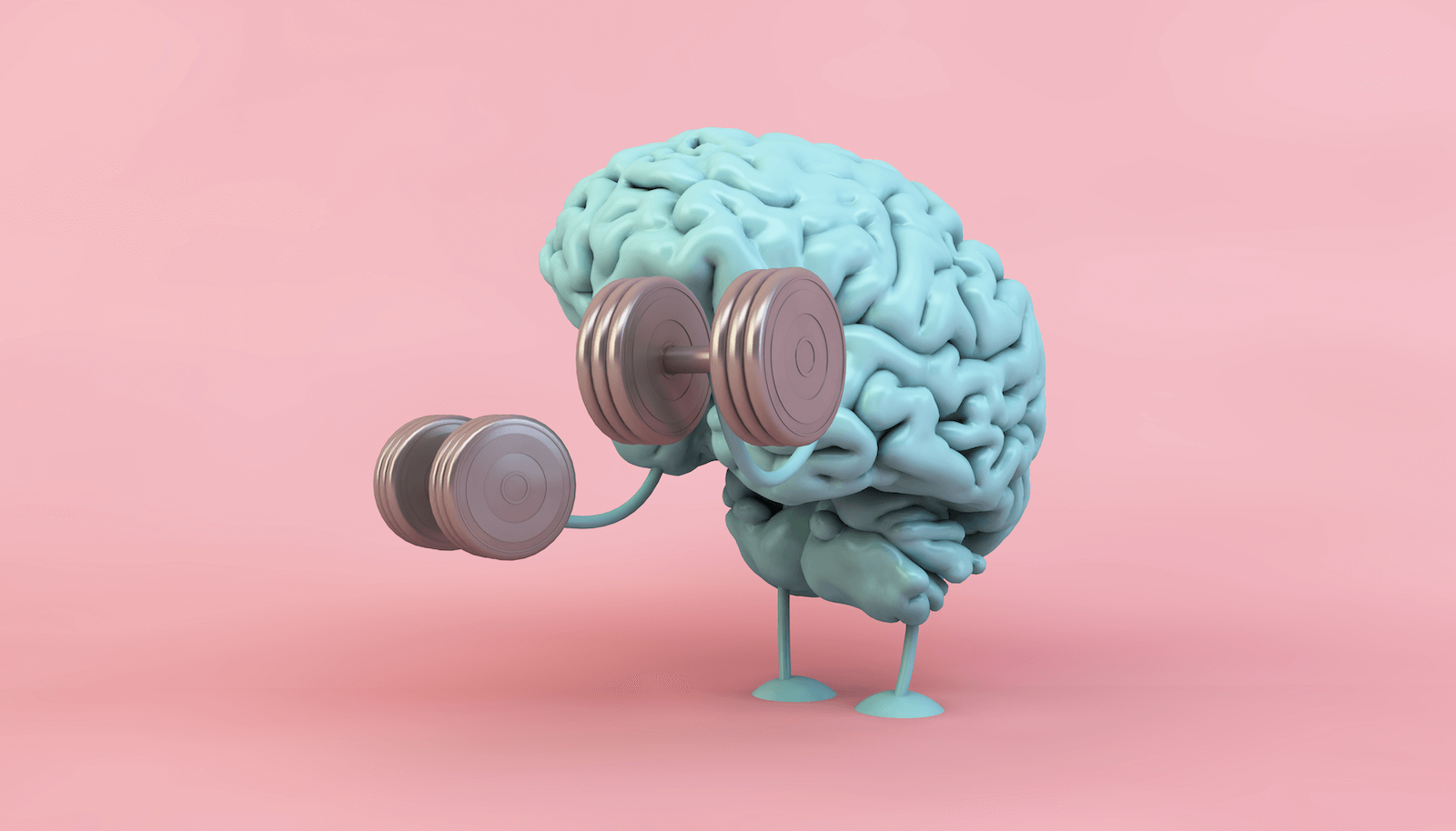 memory training: Model of the human brain holding two dumbbells against a pink background