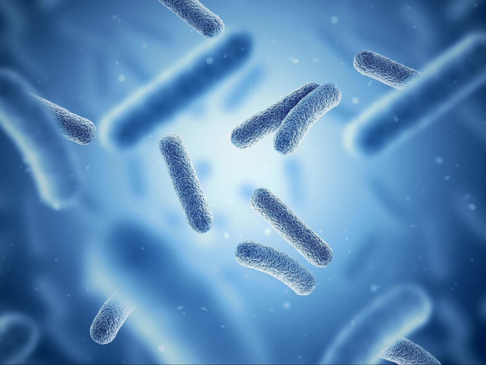 adrenal fatigue symptoms: Photo of bacteria with a blue background