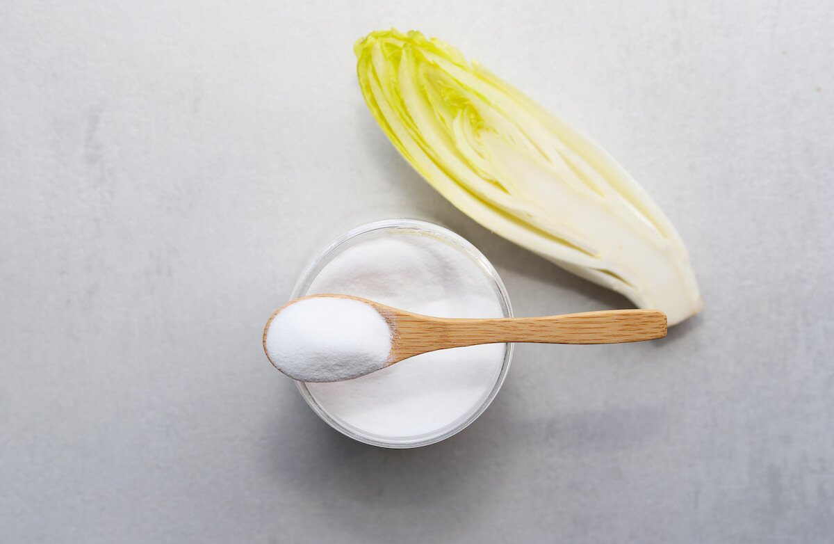 Prebiotic foods: green chicory and powder
